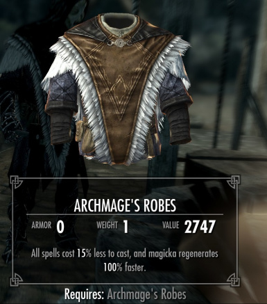 Archmages hooded robes TO Hoodless ones
