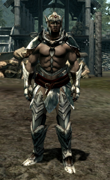 Revealing Dawnguard Male Armors and clothes - retextured at Skyrim