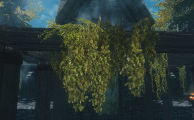 Hanging Moss replacer into plant by Pfuscher at Skyrim Nexus