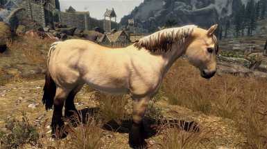 Fjord Horse