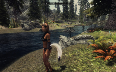 skyrim мод hdt tails wearable