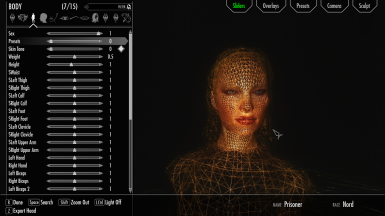 In Game Wireframe