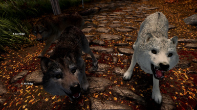 True Wolves - Fuzzy Fur - 3 Versions in Game