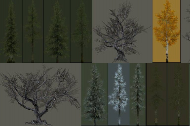 Tree LOD atlas color