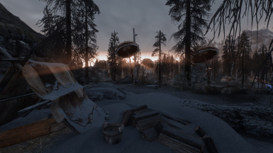 Swamp of Morthal