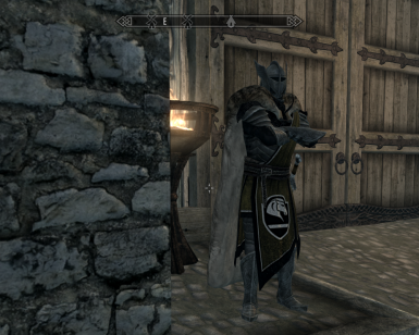 Cloaked Guard