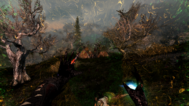No ENB first person