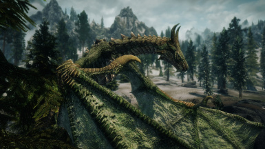 Forest Dragon