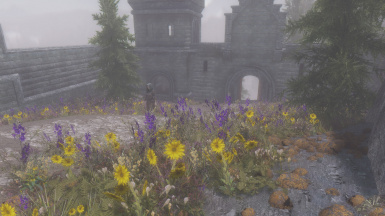 Grass On Steroids-Tamriel Reloaded Grass Patch