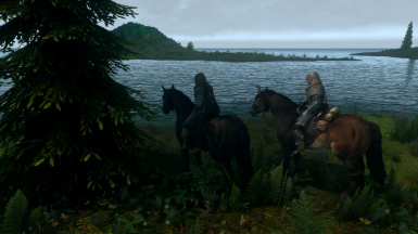 Horses in Blackland