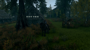 Horses in Blackland2