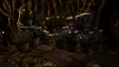 Planters in Alchemy lab