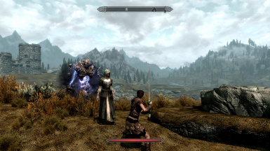 My companion female nord mage