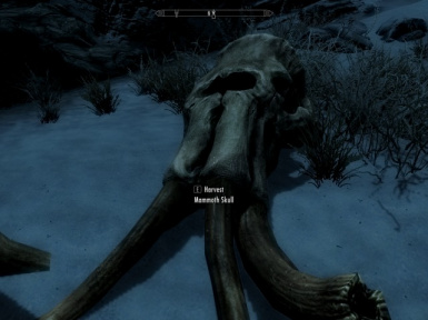 Harvestable Mammoth Skulls