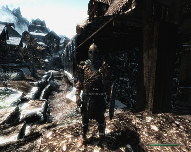 Windhelm Guard