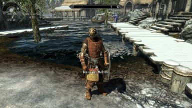 Morthal Sentry