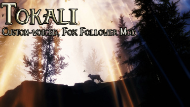 Tokali - Fox Guardian Follower