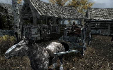 Riften Carriage
