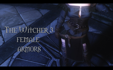 Witcher 3 Female Armors UNP