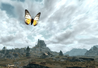 Sawtooth Butterfly