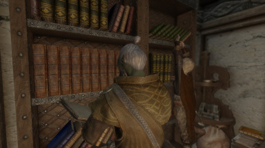 Bookshelf Fix At Skyrim Nexus