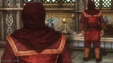 RC Dunmer Male 10