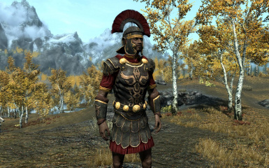 Imperial Champion - Knight Protector Armor