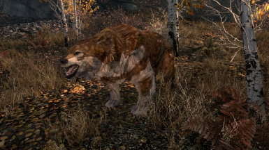 Sweetroll Grizzly