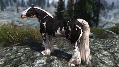 Chaos Gypsy Horse Replacer