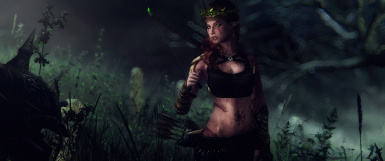 All-Is-Vain ENB