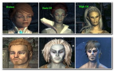 RaceMenu Teen Presets for Vanilla Humanoid Races