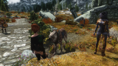 Standing Next to a Stormcloak Wolf