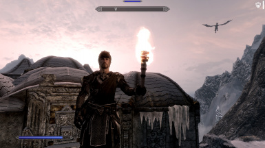 Worthwhile Torches (ELFX Compatible)