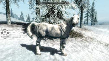 Horses of Skyrim