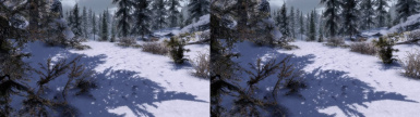 SBS - Natural Realism - The 3D Immersive ENB experience