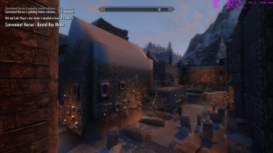 Noble Skyrim Windhelm with ETD