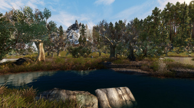 Green Reach Trees in Morthal Swamp sunset