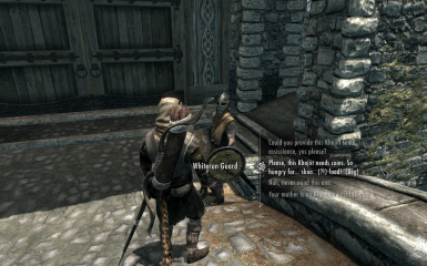 Asking Whiterun Guard for help
