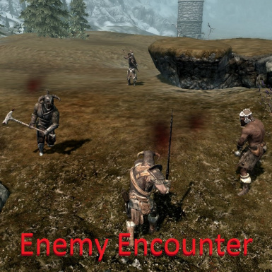 Enemy Encounter
