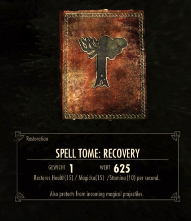 Frost Shield and Recovery Spell