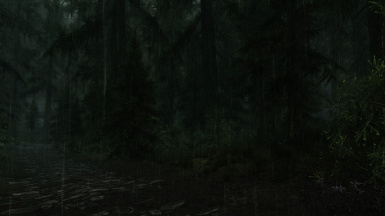 AFTER Falkreath Road