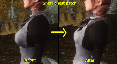 Small chest patch1