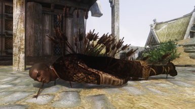 Nazeem the Hedgehog
