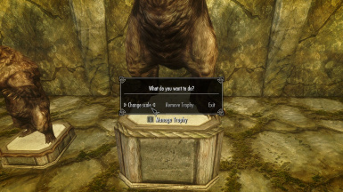 skyrim how to change trophies