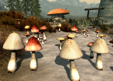 Repopulate with Mushrooms