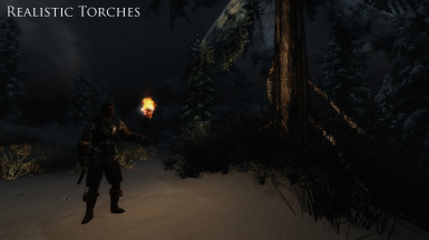 Realistic Torches  Snowscape