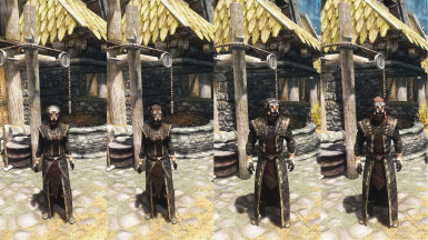 Another Dragonhide Robes Mod