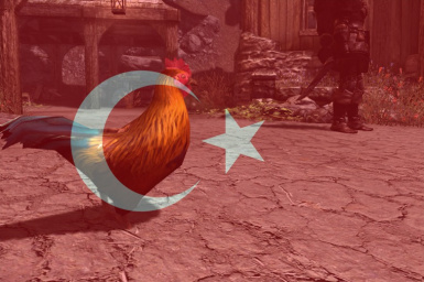 Birds of Skyrim Turkish Translation