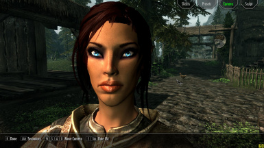 Preset Serina-the high elf