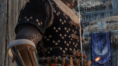 Mastercrafted Cat Armour - new textures and maps